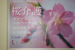 桜介護_画像